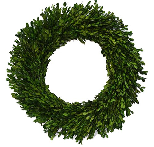 Flora Decor Preserved Boxwood Wreath Round 16