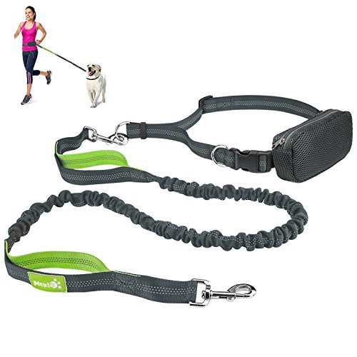 """Pecute Hands Free Dog Leash Double Handle Leash with Zipper Pouch -Extendable Bungee with Reflective Stitching - Detachable Waist Belt up to 48"""" Waist - for Jogging, Running, Hiking (Grey + Green)"""