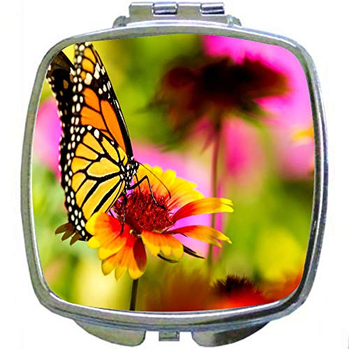 Square Compact Mirror Personal Mirror - Beautiful Tropical Color Butterfly - Monarch Butterfly ()