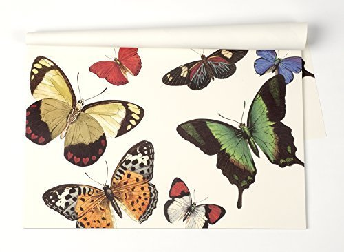 Kitchen Papers Butterfly Paper Placemat 30 Sheets American Made