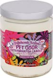 Specialty Pet Products Pet Odor Exterminator Jar Candles