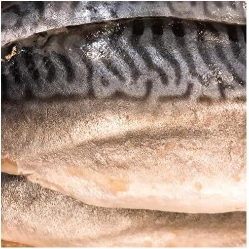シメサバ バッテラ用酢〆さば 片身5枚 サバ しめさば 業務用 さば寿司 お刺身 酒のアテ おつまみ バッテラ 鯖