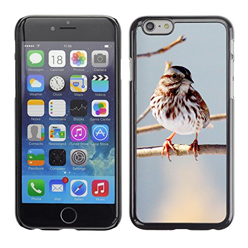 Premio Sottile Slim Cassa Custodia Case Cover Shell // F00015231 oiseau // Apple iPhone 6 6S 6G PLUS 5.5""