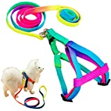 Miyoo Pet Leash Harness Set Colour Profusion High Quality Strong Durable Nylon Puppy Cat Rabbit Kitten Pull Dog Harness and Leash Set Adjustable Puppy Harnesses Lead Set