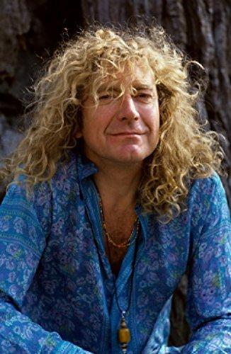 (Torrent Town Robert Plant 24X36 Poster Rare Print #TTG691981)