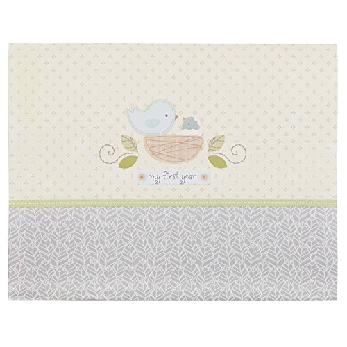 C.R. Gibson Nest First Year Keepsake Baby Calendar