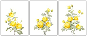 """HPNIUB Vintage Rose Art Print,Yellow Flowers Botanical Wall Art Set of 3 (8""""X10""""),Watercolor Floral Canvas Poster for Girl Bedroom or Living Room Home Decor,No Frame"""