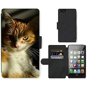 Hot Style Cell Phone Card Slot PU Leather Wallet Case // M00114653 Cat Orange Pet Feline Portrait // Apple iPhone 4 4S 4G