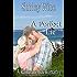 A Perfect Lie (A Katherine Bay Romance)
