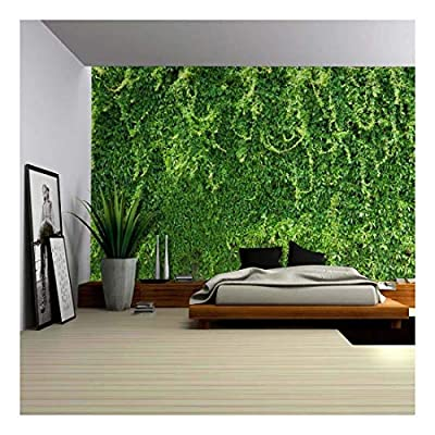 Green Branches of Leaves on The Wall Wall Mural Removable Wallpaper, With a Professional Touch, Alluring Creative Design