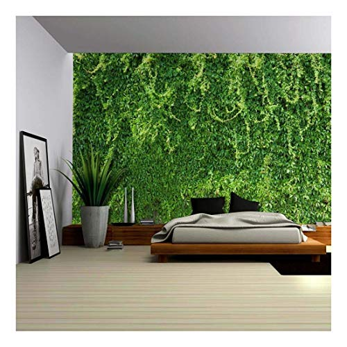 (wall26 - Green Branches of Leaves Wrapped on The Wall - Wall Mural, Removable Wallpaper, Home Decor - 100x144 inches)