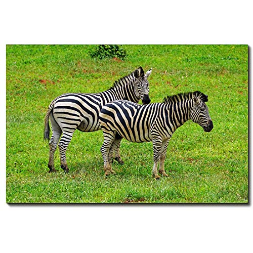 - Animal Canvas Wall Art - Zebra Modern Home Decor Stretched and Framed Ready To Hang,12 * 18inch