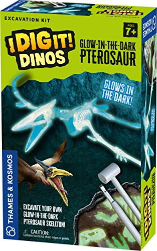 Thames & Kosmos 630485 I Dig It Dinos-Glow-in-The-Dark Pterosaur Excavation Kit Science Experiment