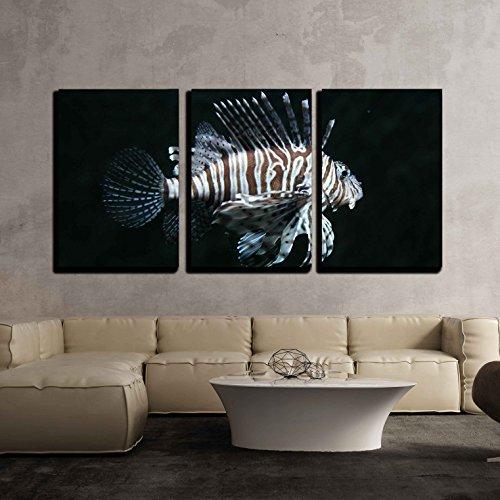 Red Lionfish (Pterois volitans) x3 Panels
