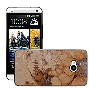 Hot Style Cell Phone PC Hard Case Cover // M00152427 Petrification Fossil Nautilus Fossil // HTC One M7