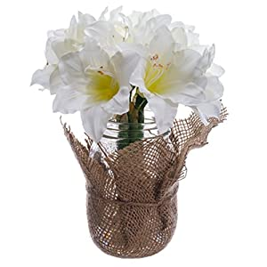 "9"" Amaryllis Silk Flower Arrangement -White (Pack of 6) 35"