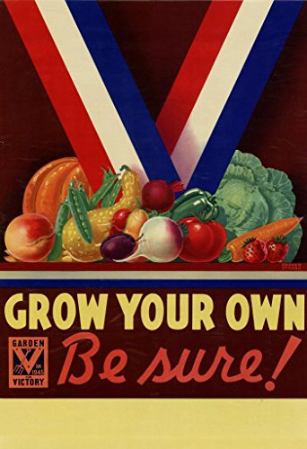 WPA War Propaganda Grow Your Own Garden for Victory Red White Blue Ribbon Vegetables Poster 24x36 inch