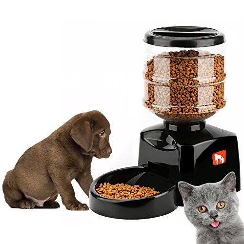 distributeur de nourriture pour chien jardingue. Black Bedroom Furniture Sets. Home Design Ideas
