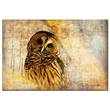 Trademark Fine Art Barred Owl by Lois Bryan Canvas Wall Art, 22x32-Inch