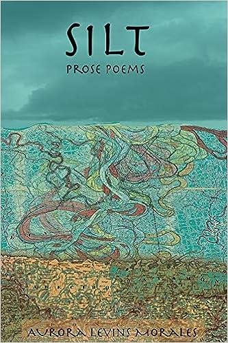 Silt: Prose Poems: Amazon.de: Levins Morales, Aurora ...