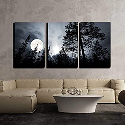 Premium Creation, Stunning Portrait, Full Moon in The Forest Wall Decor x3 Panels
