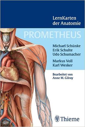 Prometheus Lernkarten der Anatomie: Box mit 367 Lernkarten aus den ...