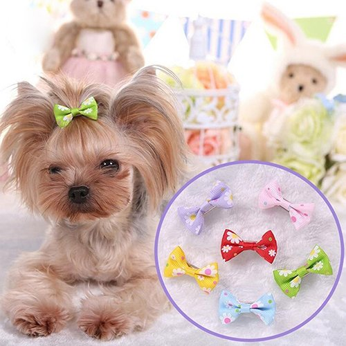 liyhh 6 Pcs Dog Cat Puppy Hair Clips Hair Bow Tie Flower Bowknot Hairpin Pet Grooming