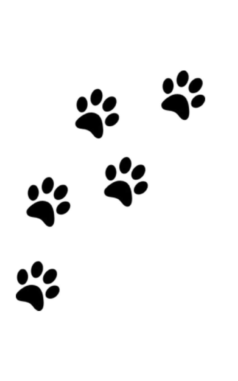 Amazon.com: Dog Paw Print Writing Drawing Journal: 9780464184034: Huhn, Sir  Michael: Books
