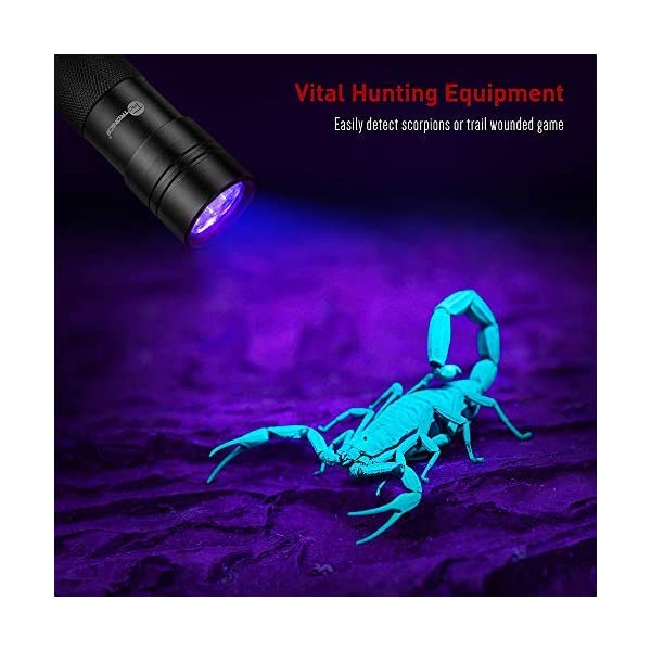 TaoTronics Black Light, 12 LEDs 395nm UV Blacklight Flashlights Detector for Pets Urine and Stains with 3 Free AAA Batteries 4