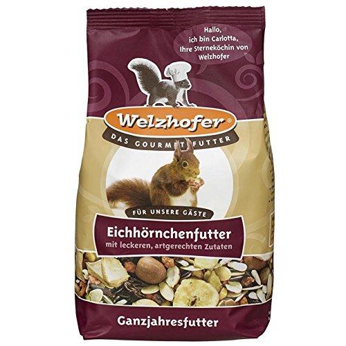 Squirrel Food 1000g WELZHOFER