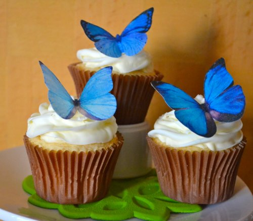 � -Large Blue Set of 12 - Cake and Cupcake Toppers, Decoration ()