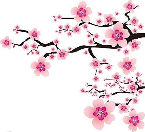 Golden autumn farm- 10 JAPANESE CHERRY TREE Pink Cloud Oriental Sweet Prunus Serrulata Flower Seeds ()
