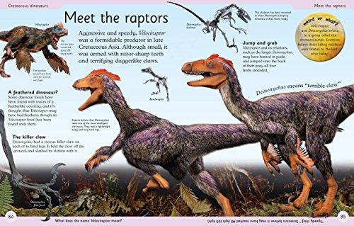 First Dinosaur Encyclopedia (DK First Reference) by DK Publishing Dorling Kindersley (Image #3)