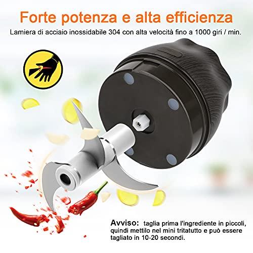 Mini Tritatutto Elettrico, Frantoio Ricaricabile USB Elettrico Macina aglio con 250ML Contenitore di Vetro per Aglio per Carne, Verdure,Cipolle e Frutta Tritacarne(1 con lama di ricambio+1 Pennello)