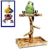 Penn Plax Bird Life Natural Tree Perch (Large Bundle)