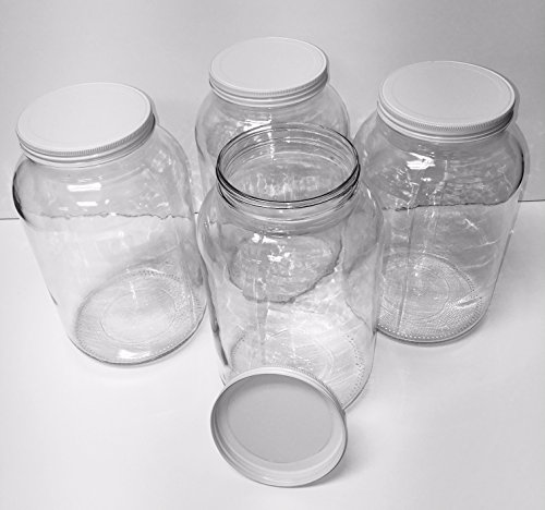PACK OF FOUR GALLON GLASS JARS - WHITE METAL LIDS - Made in USA