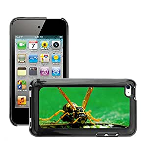 Hot Style Cell Phone PC Hard Case Cover // M00046708 animals leaves wasp eating macro insect // Apple iPod Touch 4 4G 4th