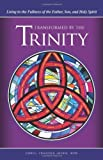 img - for Transformed by the Trinity: Living in the Fullness of the Father, Son, and Holy Spirit book / textbook / text book