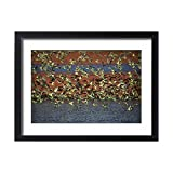 home drinking water treatment plant Framed 24x18 Print of Budgerigars - Drinking - Papunya Aboriginal Community (14707966)