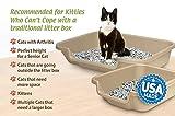 "Kitty Go Here Senior Cat Litter Box 24"" x 20"" x"