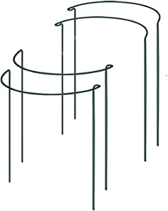 "4 Pack Plant Support Stakes, TANOKY Half Round Metal Garden Plant Support Ring Hoop, Plant Support Cages for Potted Plants, Tomato, Rose, Vine - 16"" High x 9.8"" Wide"