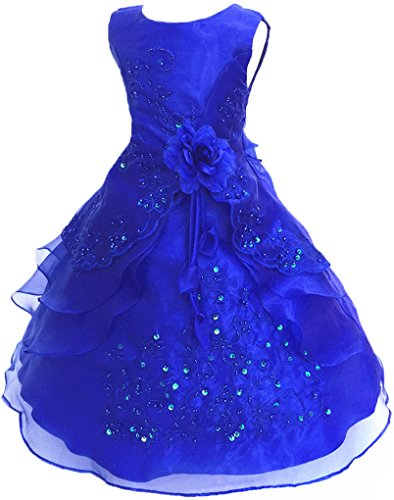 Shiny Toddler Little Girls Embroidered Beaded Flower Girl Birthday Party Dress with Petticoat 2t to 3t(Tag100),Royal Blue -