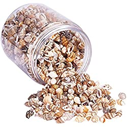 PandaHall Elite About 1400-1500 Pcs Tiny Sea Shell Ocean Beach Spiral Seashells Craft Charms Length 7-12mm for Candle Making, Home Decoration, Beach Theme Party Wedding Decor, Fish Tank and Vase Fille