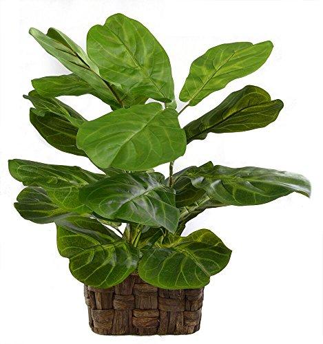 Fig Ceramics (Le Silk Shoppe Fiddle Leaf Fig Basket (2465))