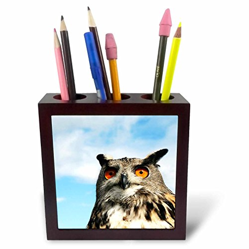 3dRose ph_219740_1 Eagle Owl Bubo in Spain Tile Pen Holder, 5'' by 3dRose