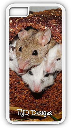 iPhone 8 Case Mastomys Mice Nager Rodents Pets Africa Savannah Customizable TYD Designs in White Rubber