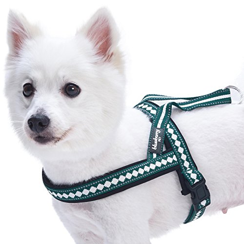 Blueberry Pet 7 Colors Soft & Comfy Jacquard Padded Dog Harness, Chest Girth 21.5