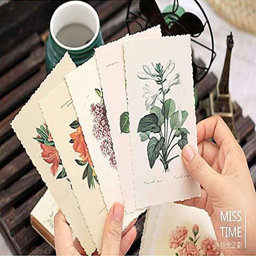 Cards Invitations - 30pcs Set Vintage Herbage Plant Greeting Card Postcard Birthday Letter Envelope Gift Message - Postcard Greet Cute Cards Place Invitations Postcard Mini Outdoor Retro Vin