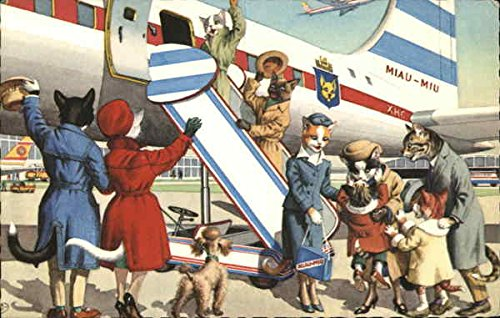 Cats Boarding Airplane Dressed Animals Original Vintage Postcard from CardCow Vintage Postcards