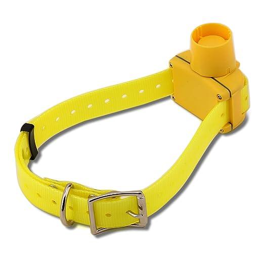 22 opinioni per Yuanj Beeper Collare Cane Da Caccia Addestramento Dog Collar Beep